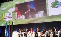 GGGI participates in the XIV World Forestry Congress