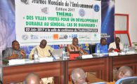 Panel on Green Cities for Sustainable Development in Senegal